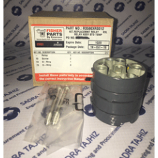 FISHER Replacement Relay Assembly